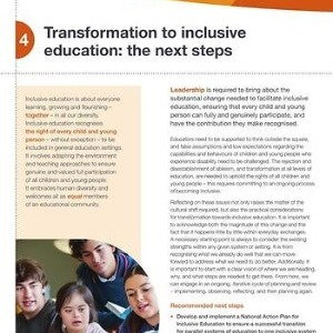 Transformation to inclusive education: the next steps